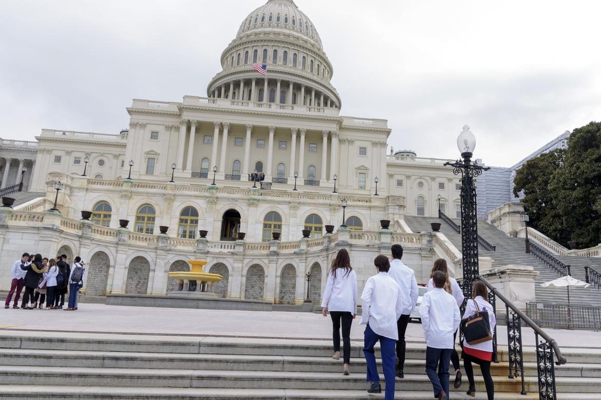Med students climbing the steps to the Capitol during the 2019 Medical Student Advocacy & Region Conference (MARC)