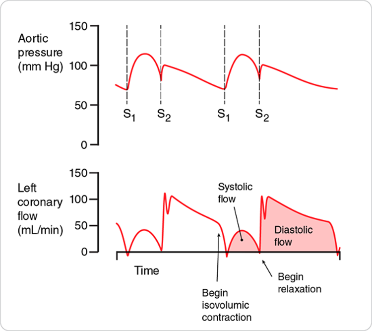Aortic pressure profile