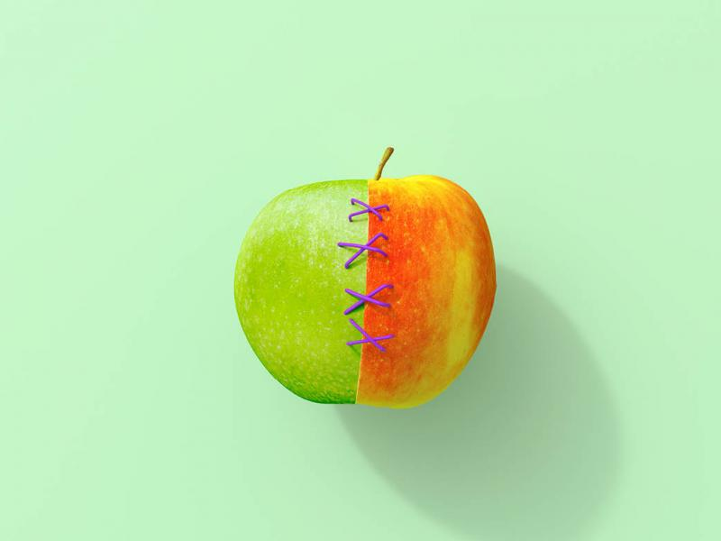 Graphic of green and red apple halves