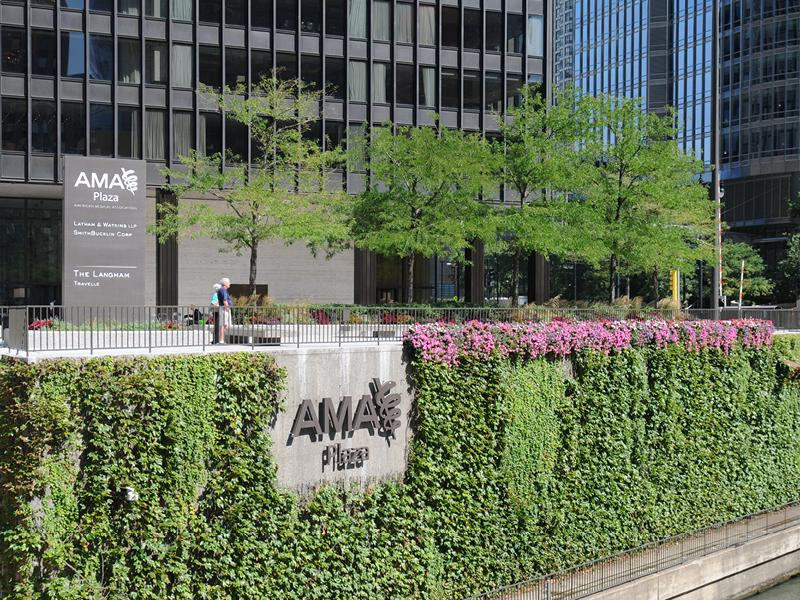 AMA in downtown Chicago