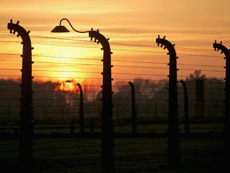 Sun rises over electrified fence