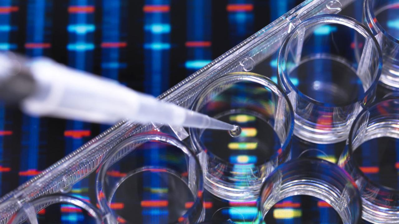 7 ways to expand diversity in precision medicine research