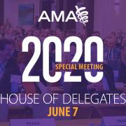 2020 Special Meeting of the House of Delegates graphic