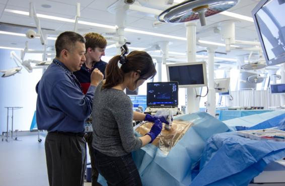 David H. Chong, MD, working with students Christopher Hoeger and Arin Kim during a skills class.